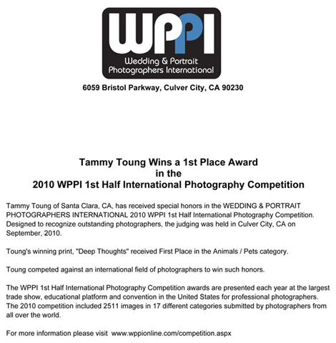 2010 WPPI Contest 1st place | Memoire Studio Photography