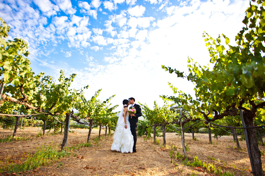 Napa V Sattui Wedding Photographer | Diana & John